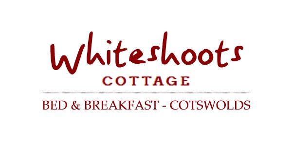 whiteshot-logo